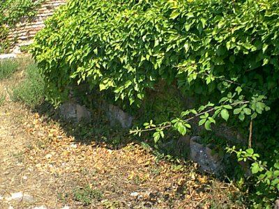 Ostia Antica - 1999-08-03-143506