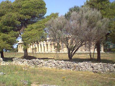 Paestum - 1999-08-05-104930