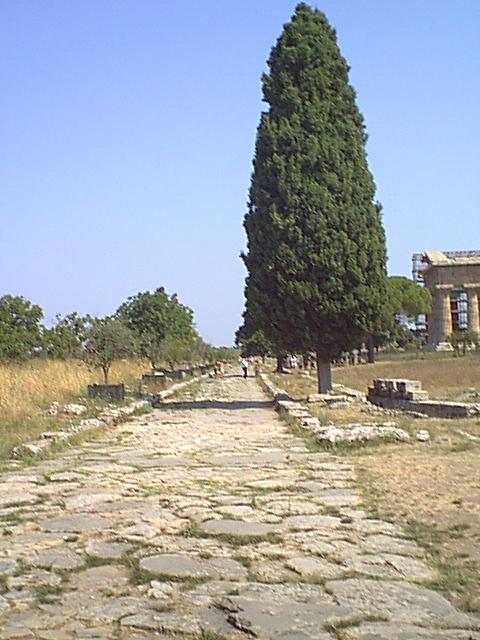 Paestum - 1999-08-05-105707