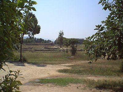 Paestum - 1999-08-05-121455