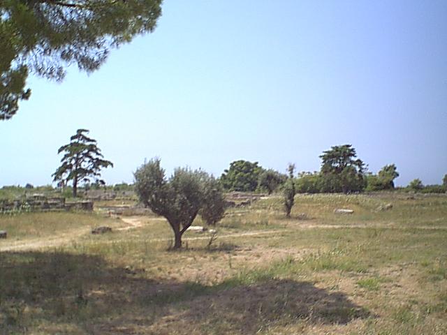 Paestum - 1999-08-05-122049
