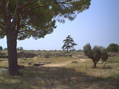 Paestum - 1999-08-05-122052