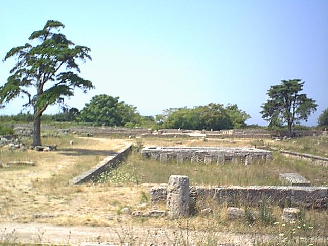 Paestum - 1999-08-05-123323