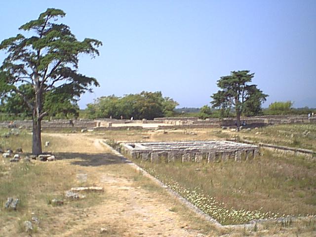 Paestum - 1999-08-05-123519