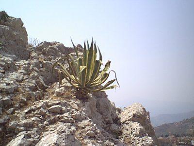Taormina - 1999-08-07-125030