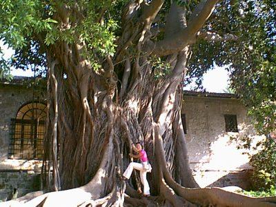 Palermo - 1999-08-14-180601