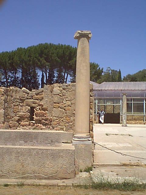Villa Romana del Casale - 2000-08-06-130636