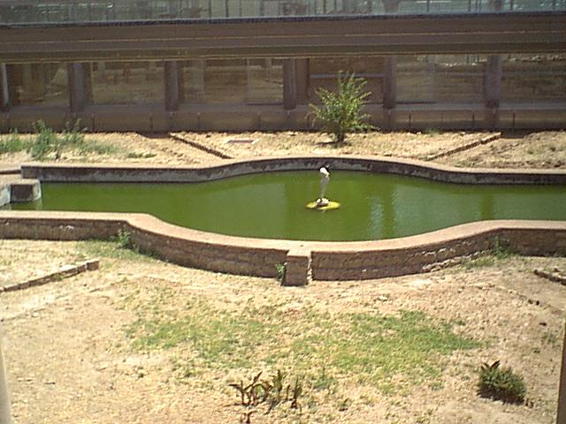 Villa Romana del Casale - 2000-08-06-132634