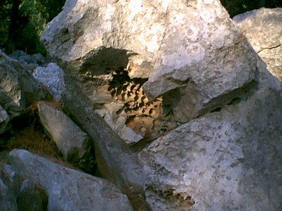 Monte Pellegrino - 2000-08-15-183257