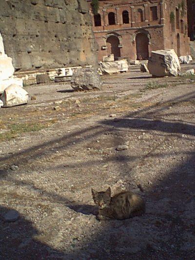 Forum of Trajan - 2000-09-01-164946