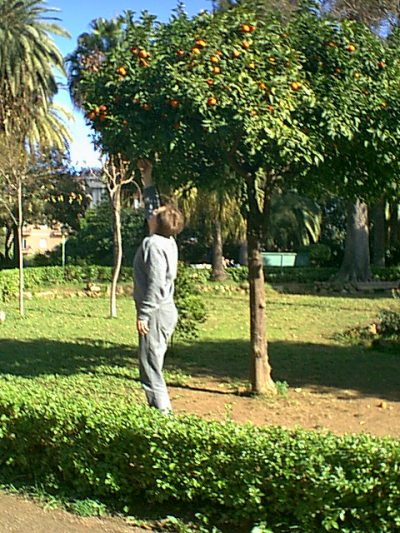 Palermo - 2000-12-24-125338