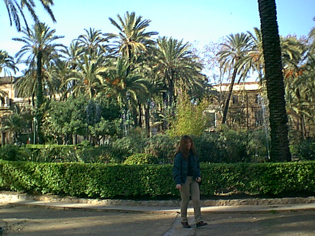Palermo - 2001-01-05-135323