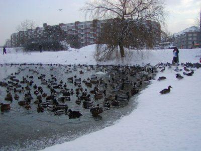Christianshavns Vold - 2001-12-31-130826
