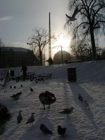 Christianshavns Vold - 2001-12-31-131539