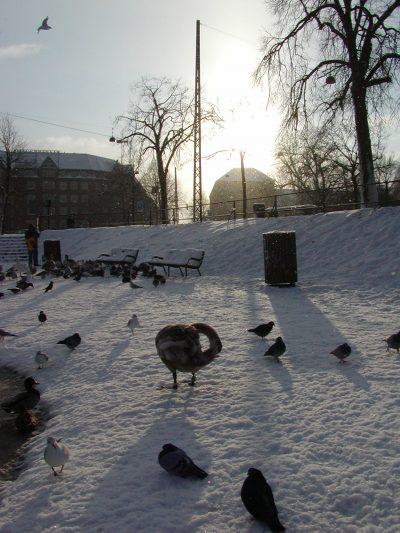 Christianshavns Vold - 2001-12-31-131557
