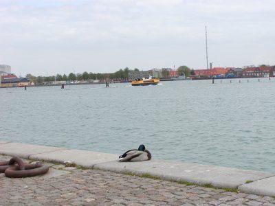 Copenhagen - 2002-04-30-130246