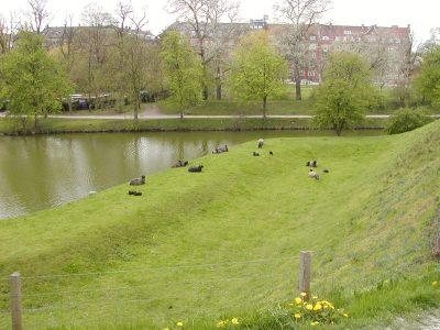 Copenhagen - 2002-04-30-140101