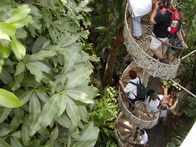 Botanic Garden - 2002-07-30-133555