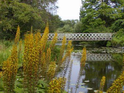 Botanic Garden - 2002-07-30-141932