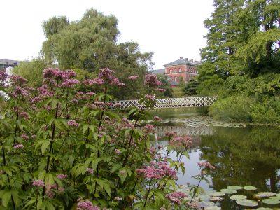 Botanic Garden - 2002-07-30-142106