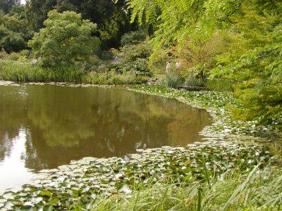 Botanic Garden - 2002-07-30-142920
