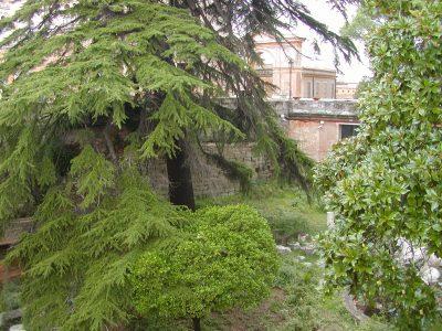 Capitoline Hill - 2002-08-30-164125