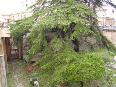 Capitoline Hill - 2002-08-30-164134