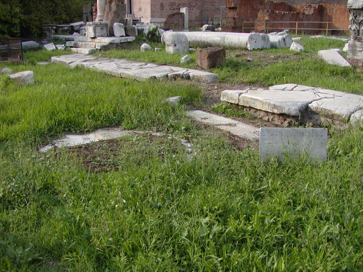 Forum Romanum - 2002-09-04-172552