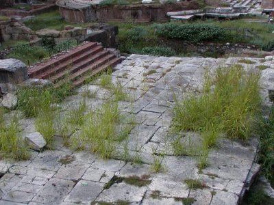 Area Sacra di Largo Argentina - 2002-09-06-185001