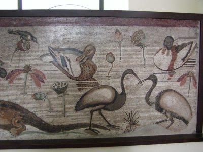Museo Archeologico Nazionale - 2002-09-13-105732