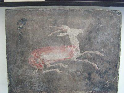 Museo Archeologico Nazionale - 2002-09-13-132605