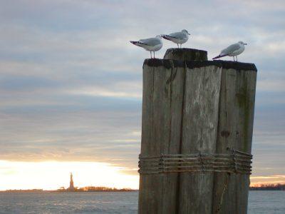 Battery Park - 2003-01-09-151708