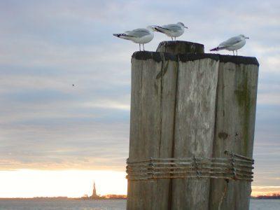 Battery Park - 2003-01-09-151723