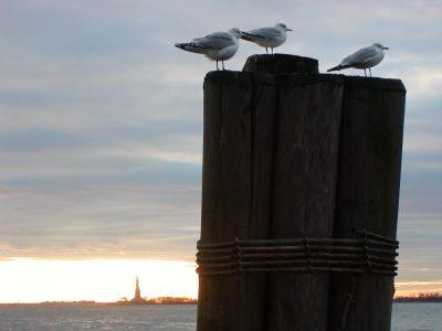 Battery Park - 2003-01-09-151743