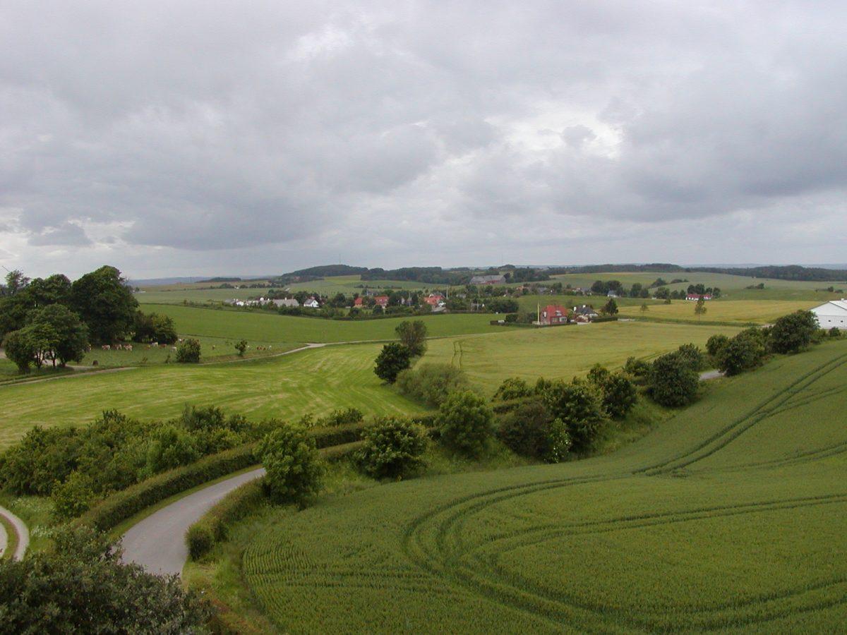 Vejle Amt - 2003-06-21-162126