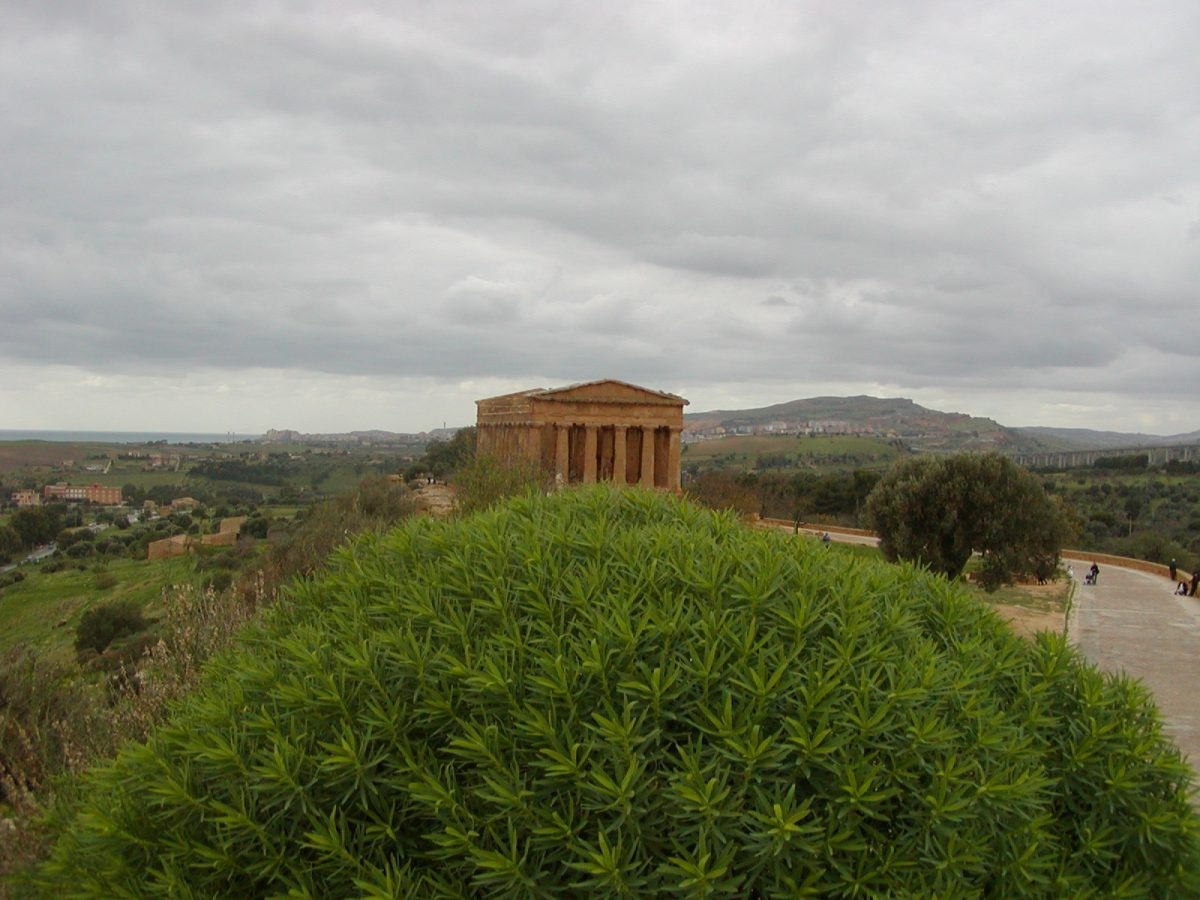 Valley of the Temples - 2003-12-28-124456