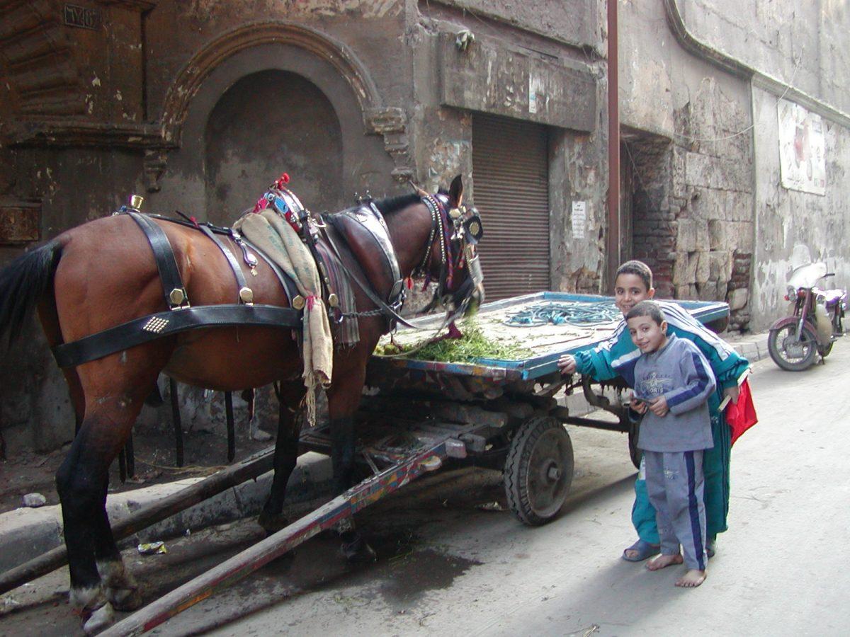 Cairo - 2004-01-19-141427