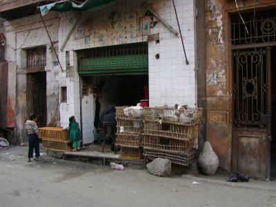 Cairo - 2004-01-19-141728