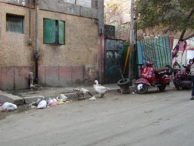 Cairo - 2004-01-19-141804
