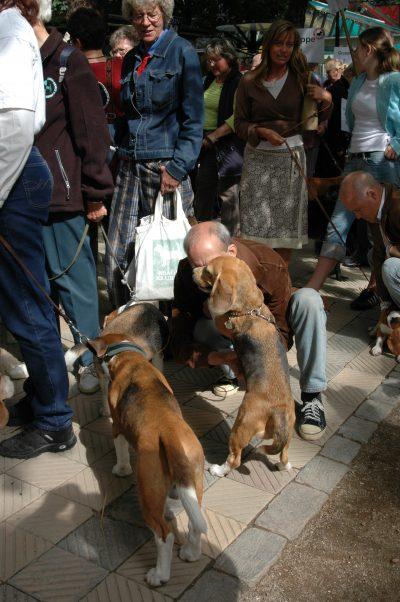 Tivoli - 2004-08-28-135530