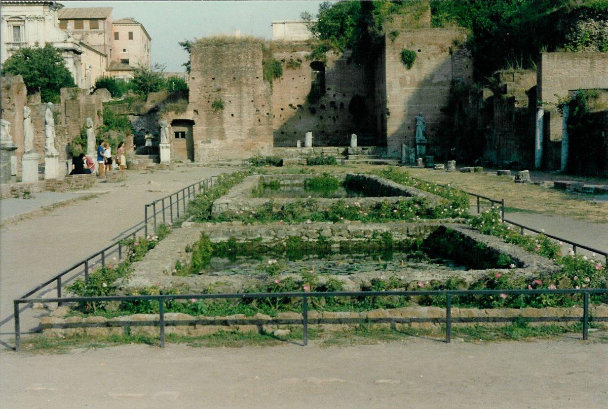 Forum Romanum - The house of the Vestal virgins